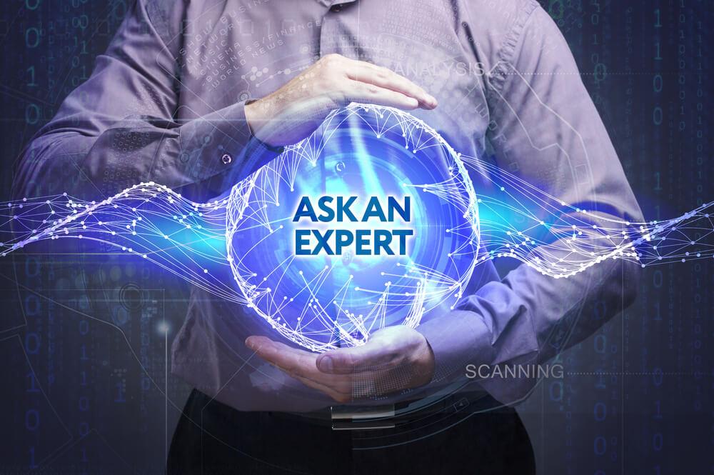 expert seo